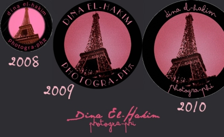 The Evolution of Dina's Logo